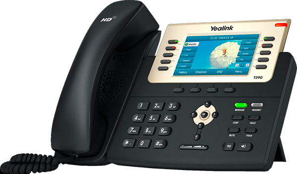 Phone T29G for recepcionist